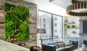 living plant art 2